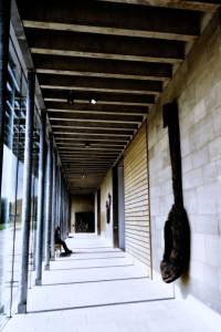 Lonely Corridor !